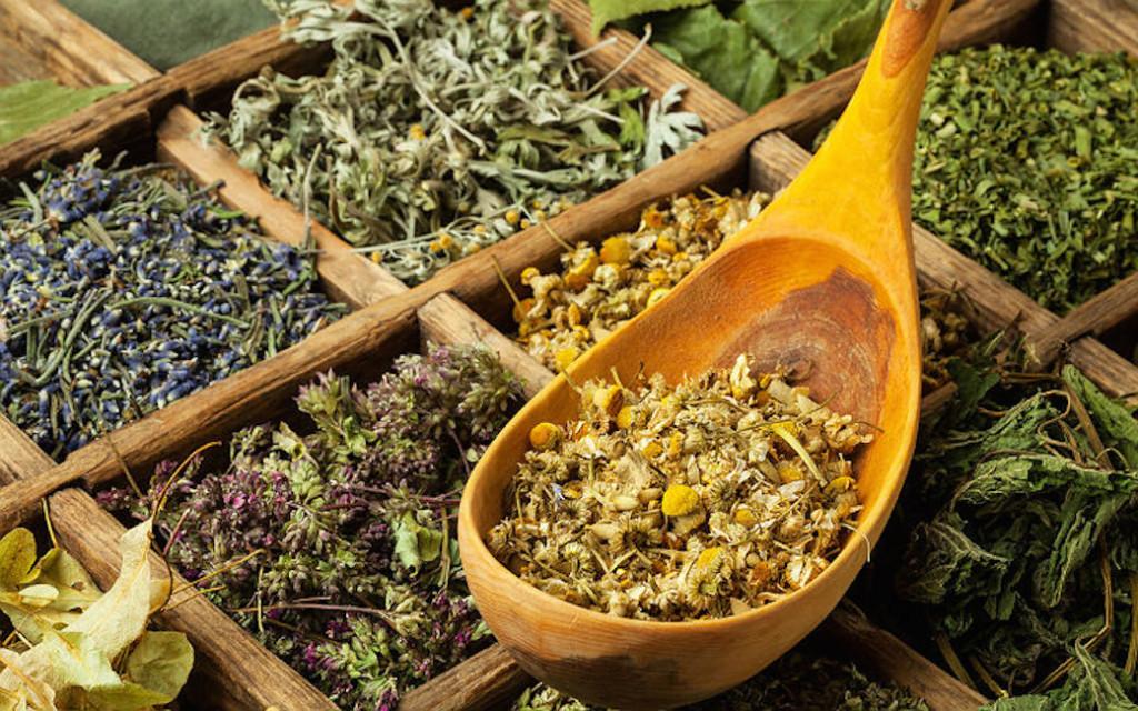 Как использовать травы против псориаза?